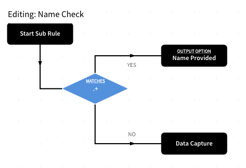 Data Capture - Name Check Sub Rule